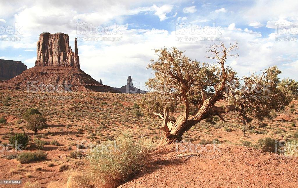 Afternoon Sunshine in Monument Valley, Arizona, Southwest USA royalty-free stock photo
