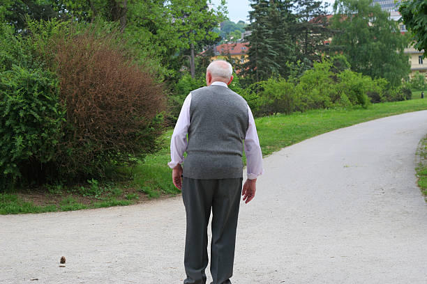 Afternoon Walk stock photo