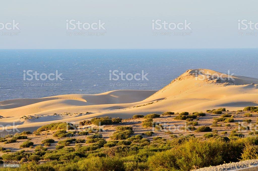 Agadir Dune foto