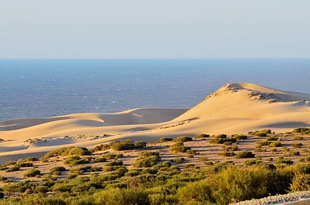 Duna de Agadir - foto de stock