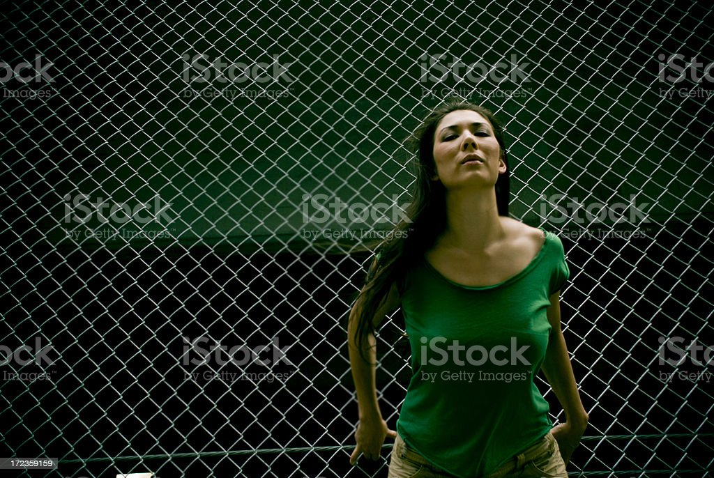 Against the fence royalty-free stock photo