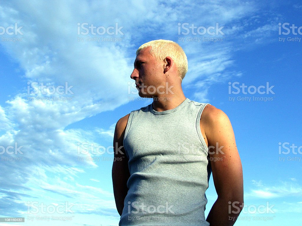 Against the Sky. royalty-free stock photo