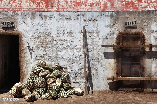 Agaves ready to be steamed for tequila production, Jalisco, Mexico