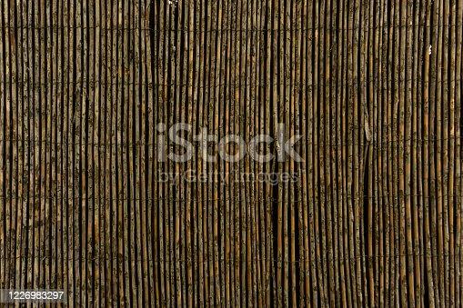 Aged cane fence. Vertical stripes. Background