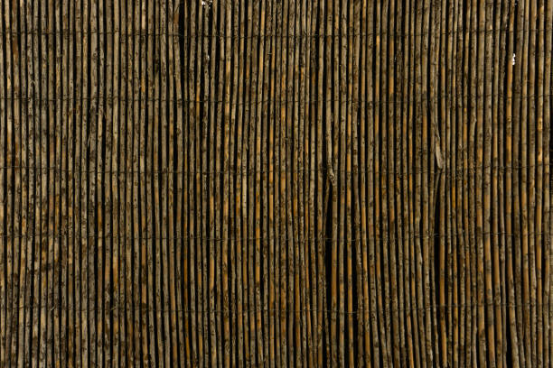 Aged cane fence. Vertical stripes. Background stock photo