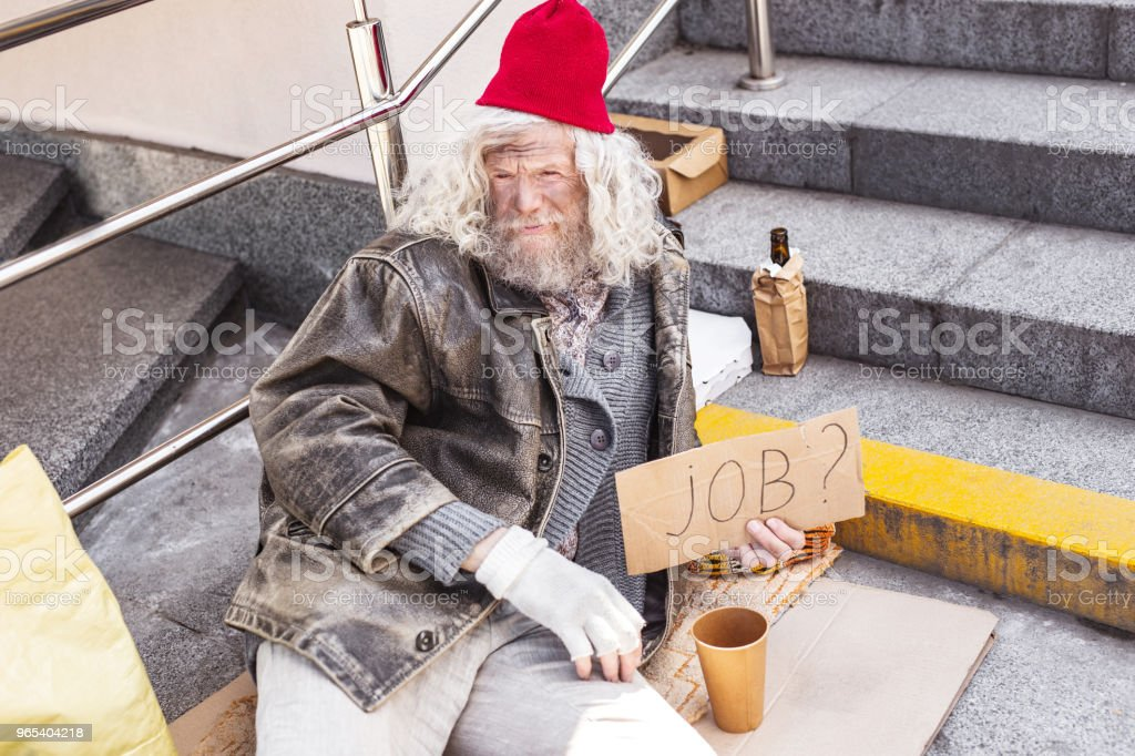 Aged homeless man holding a job sign royalty-free stock photo