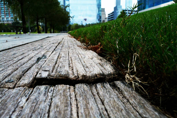 aged wood elements in the sun - deign stock pictures, royalty-free photos & images