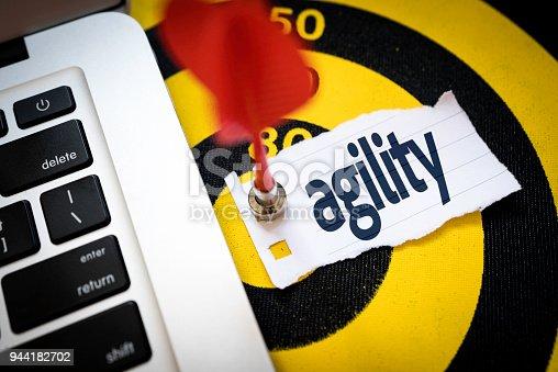 istock Agility 944182702