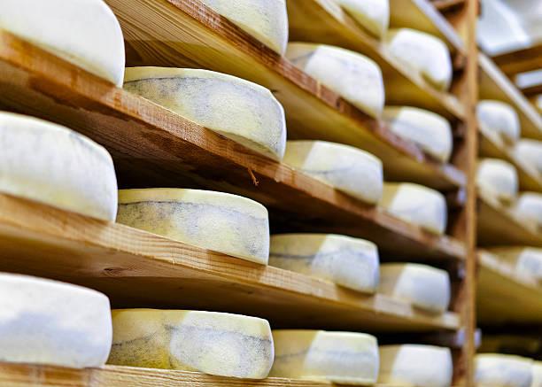 aging gruyere de comte cheese at maturing cellar at creamery - ser comte zdjęcia i obrazy z banku zdjęć