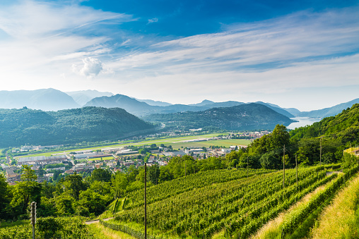istock Agno, Canton Ticino, Switzerland. View of Agno, Lake Lugano, Lugano Airport, vineyards on the hills surrounding, on a beautiful summer day 694767568