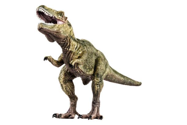 Agressive tyrannosaurus rex dinosaur plastic toy picture id946719402?b=1&k=6&m=946719402&s=612x612&w=0&h=ftc dba  rglirngzsry6uxanz4dhfiv2tozwbau wm=