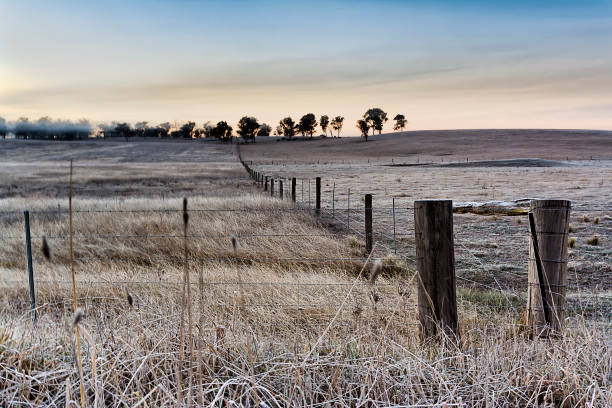 Agri Winter Fence Frost