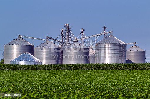istock Agribusiness in the Summer 0081 1163361023
