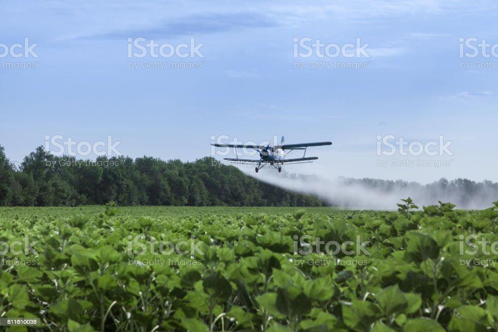 Avião agrícola está voando sob o campo de girassóis e água de pulverização - foto de acervo