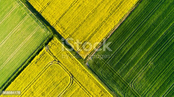 Abstract agricultural area in spring - aerial view