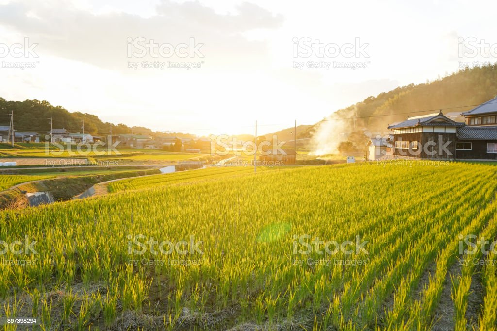 comunidad agrícola en Japón - foto de stock