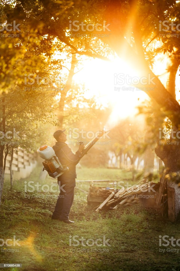 Agricultural details with farmer using manual sprayer machine for pesticide control in fruit orchard. stock photo