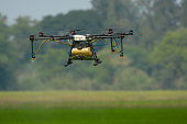 Agricultural drone working in rice field, Thailand, Smart Farm, Unmanned Aerial Vehicle. (UAV)