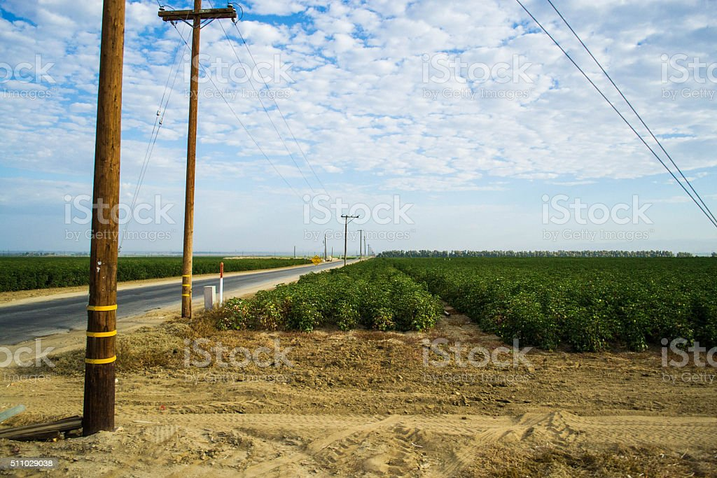 Agricultural Farm Lands stock photo