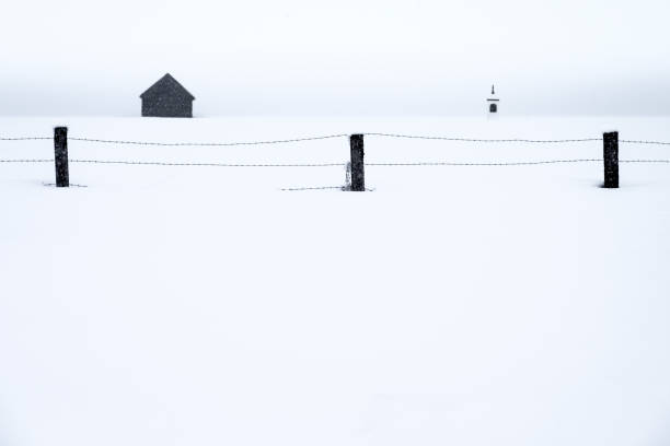 Landwirtschaftliche Fechten in Schneelandschaft – Foto