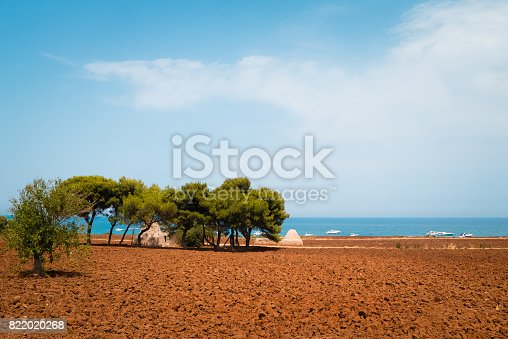 istock Agricultural field on the Adriatic sea in the summer day. 822020268