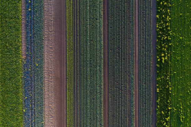 landwirtschaftliche felder, luftbild - aerial view soil germany stock-fotos und bilder