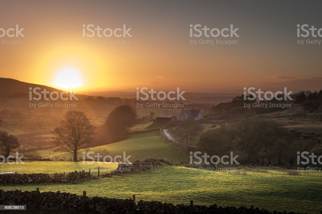 Agricultural fields and trees in winter sunset at County Antrim, Northern Ireland stock photo