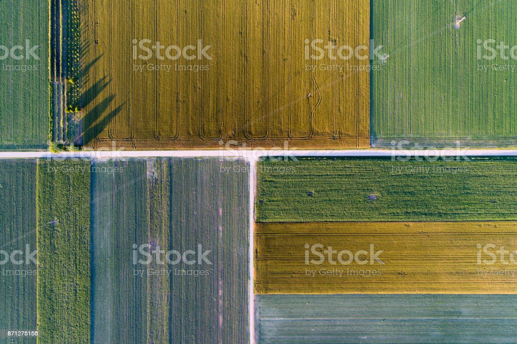 Agricultural fields from drone stock photo