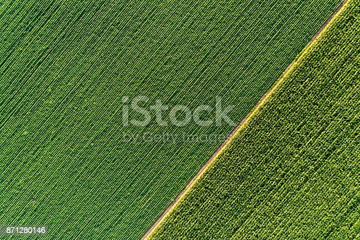 istock Agricultural fields from drone 871280146