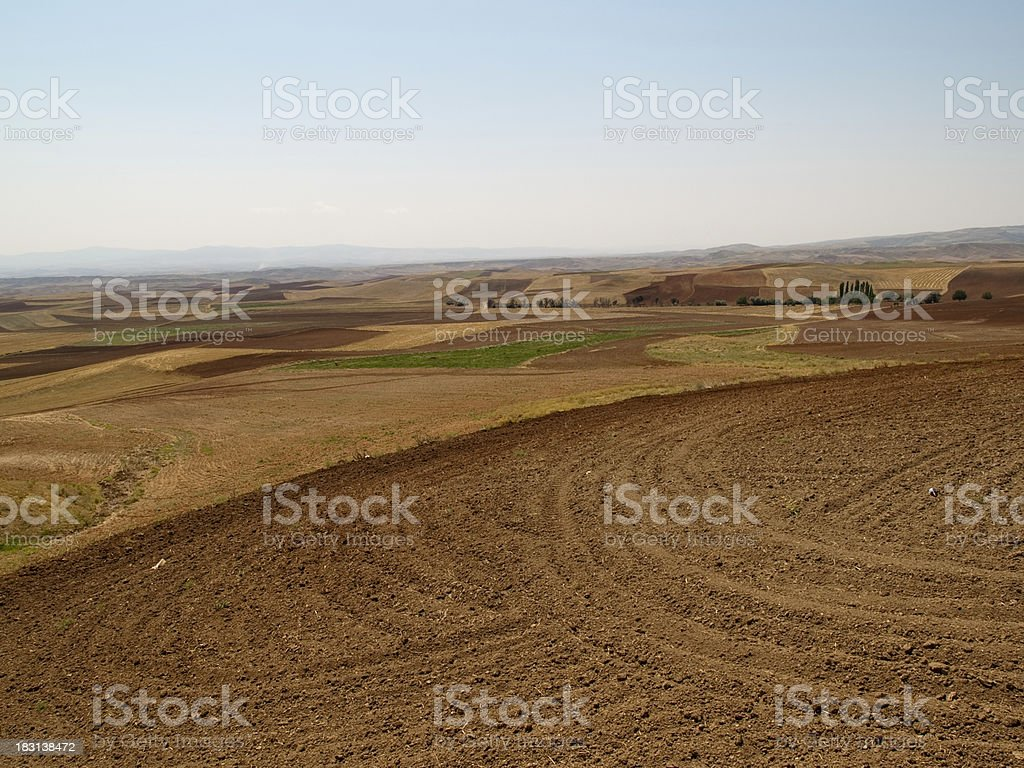 Agricultural fields royalty-free stock photo
