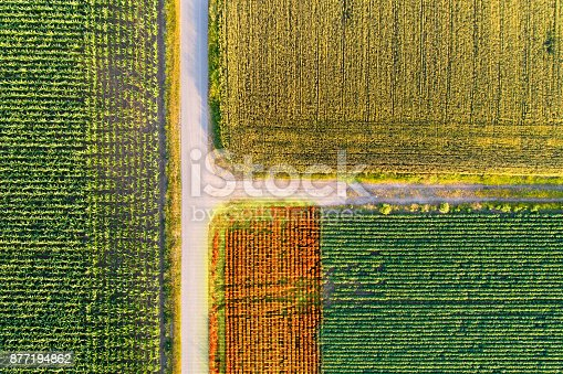 istock Agricultural fields scanned by thermal camera on drone 877194862