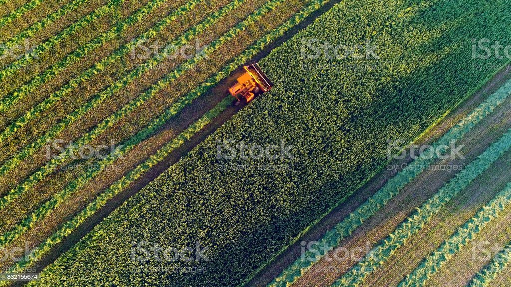 Agricultural harvesting at the last light of day, aerial view. stock photo
