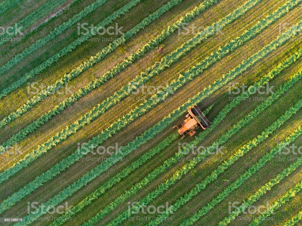 Agrícola de colheita à última luz do dia, aerial view - foto de acervo