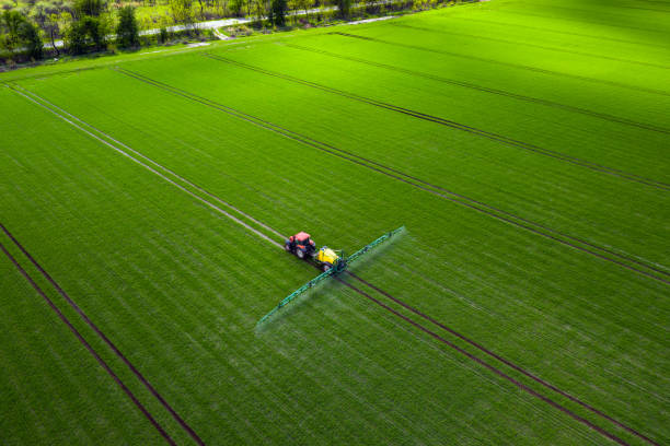 Agricultural industry, tractor spraying herbicides in green field stock photo