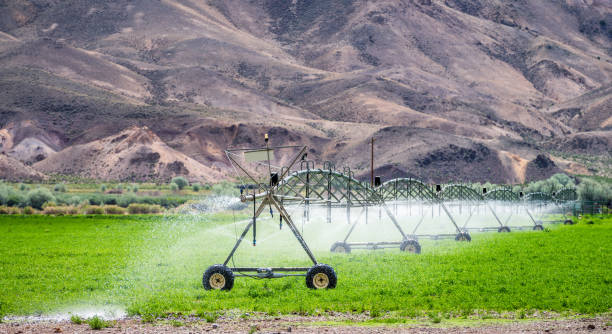 Agricultural irrigation of a field in dry countryside A letterbox format image of a long automated irrigation machine in use in the dry mountain landscape of Utah, USA. irrigation equipment stock pictures, royalty-free photos & images