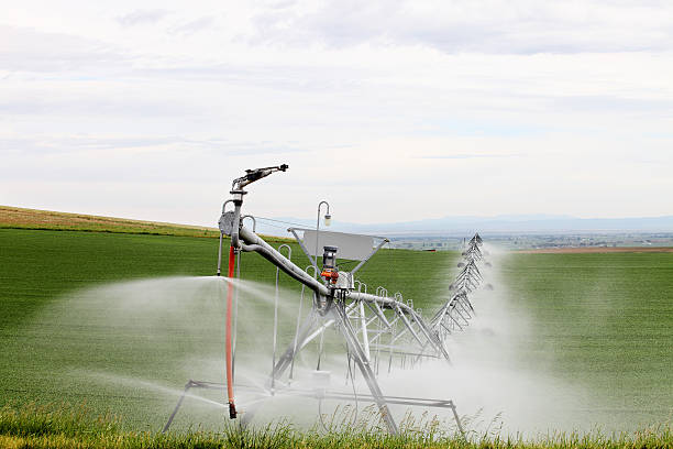 Agricultural Irrigation stock photo
