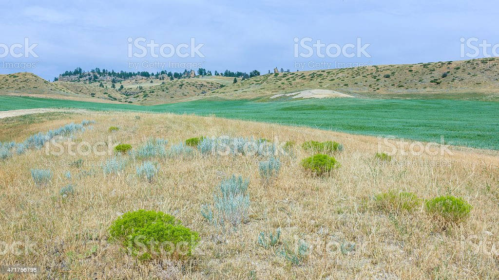 Agricultural land and dry prairie in summer, Billings, Montana, USA. stock photo