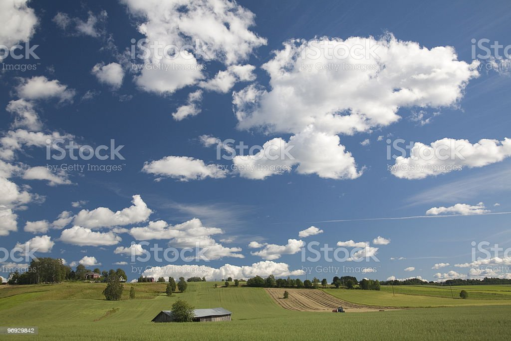 Agricultural land in Finland royalty-free stock photo