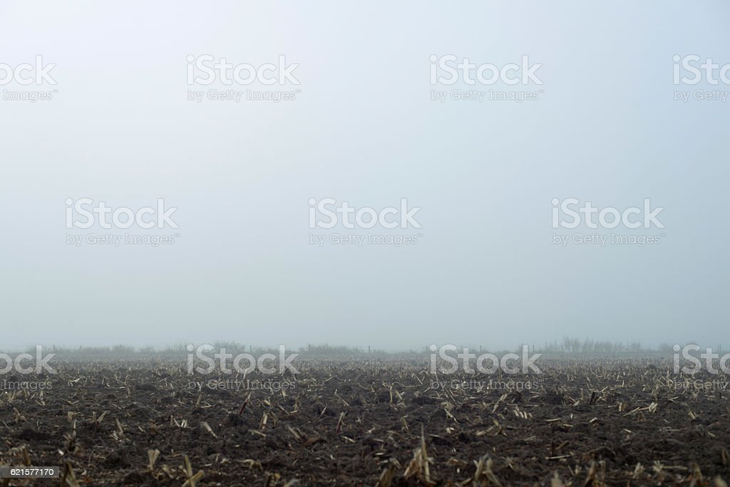 Agricultural land in morning mist. Geesteren. Achterhoek. Gelderland. The Netherlands. photo libre de droits