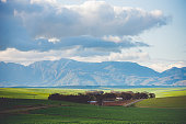 istock Agricultural landscape in the Overberg 1290235838