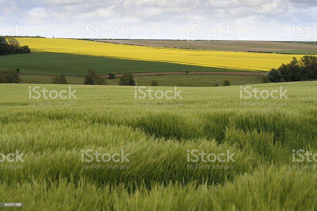 Agricultural landscape on the Lincolnshire Wolds stock photo