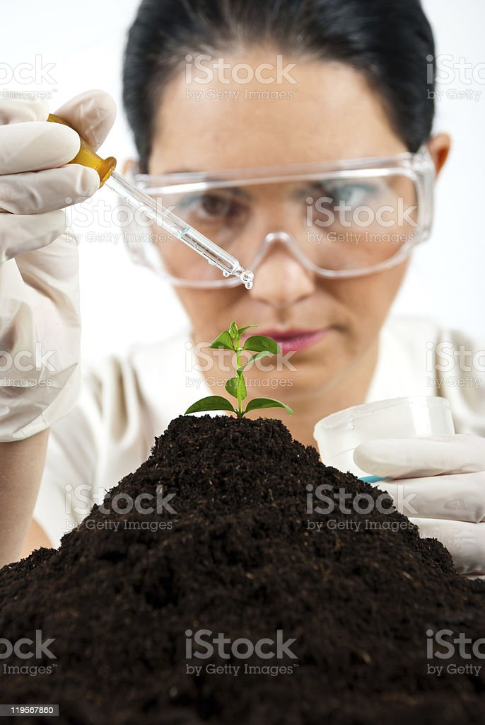 Agricultural scientist testing in laboratory royalty-free stock photo