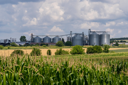 Storage and drying of grains. Agricultural Silo