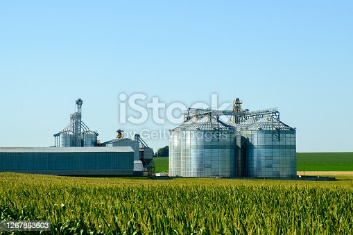 Agricultural Silos. Building for storage and drying of grain crops. Modern granary elevator. Agribusiness concept.