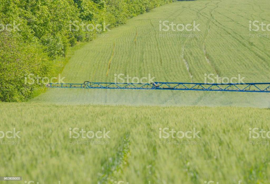 Agricultural Sprayers Spray Chemicals On Young Wheat Stock Photo - Download  Image Now