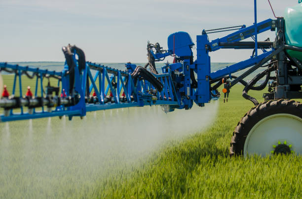 Agricultural sprayers, spray chemicals on young wheat. Agricultural sprayers, spray chemicals on young wheat. spraying pesticides on wheat field with sprayer spraying stock pictures, royalty-free photos & images