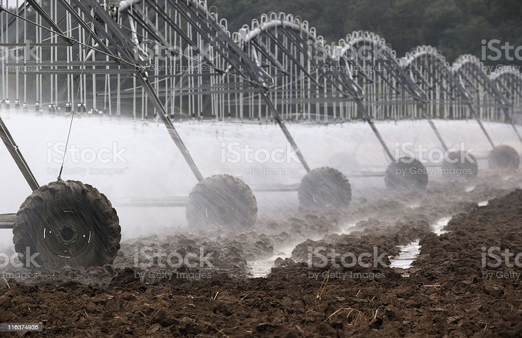 Agricultural Sprinkler Irrigation Crop Spray royalty-free stock photo