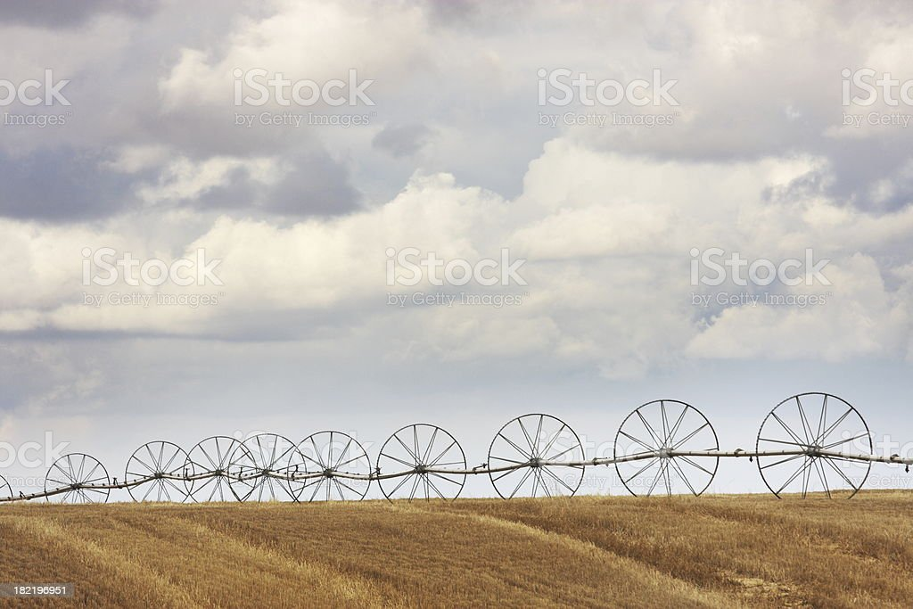 Agricultural Sprinkler Irrigation Wheel Line royalty-free stock photo