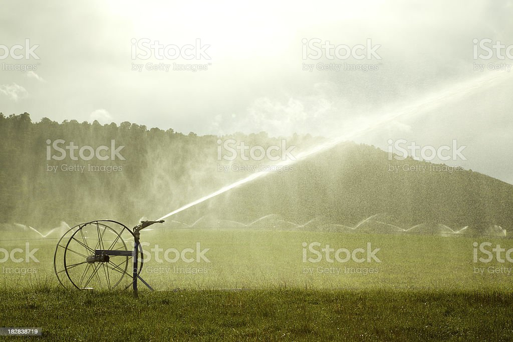 Agricultural Sprinkler royalty-free stock photo
