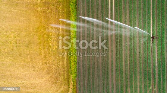 Artificial watering, wheat field - agricultural area, aerial view
